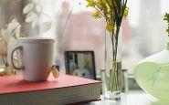 Как выбрать и подготовить Цветы для дома